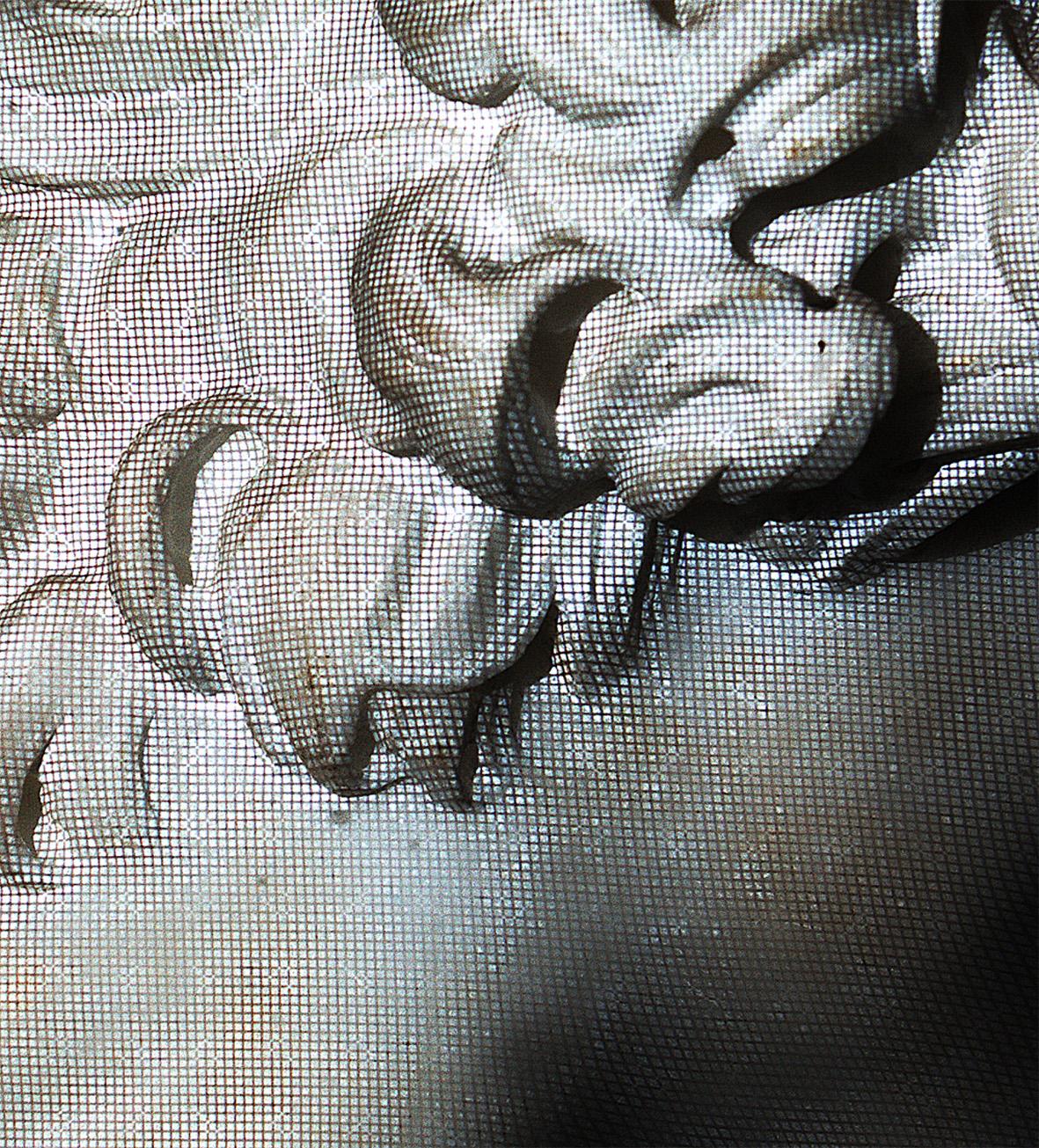 Shapecam von Eyetronics. © researchgate.                         [online]