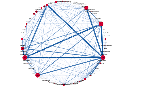 Fig. 11: A network                         visualisation showing which creatures are often depicted together on a seal.                         The underlying data takes into account all existent depictions, regardless                         if they are certain or uncertain. [Graphic by Martina Trognitz, Vienna.]