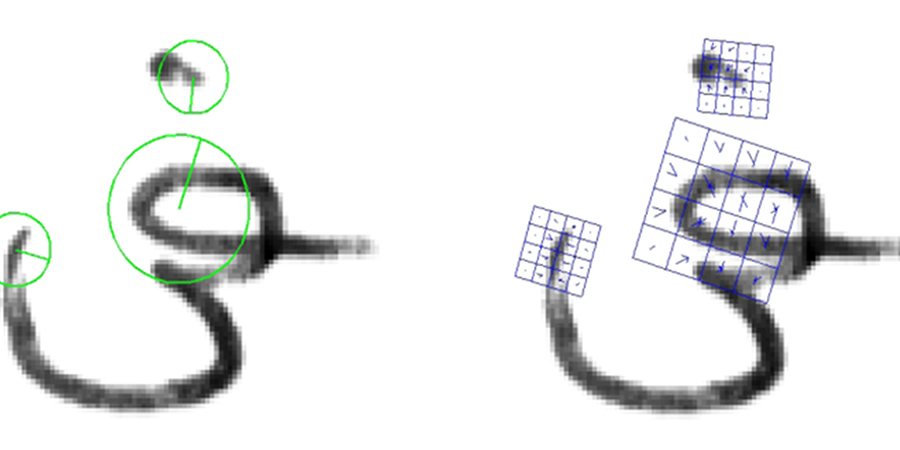 Exemplare für Schlüsselpunkte in                                einer Handschrift. Die Mittelpunkte der Kreise deuten auf den Ort des                                Schlüsselpunktes, der Durchmesser auf die Skalierung, und die Orientierung                                ist durch die Linie gegeben (links). Deskriptoren der ermittelten                                Schlüsselpunkte (rechts) (Quelle: Autoren).
